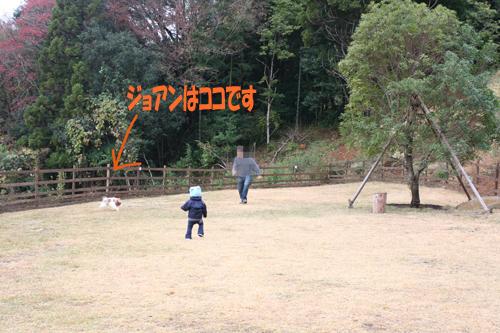 2008-11-25_2321-web.jpg
