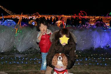 2009-12-13_7750-web4.jpg