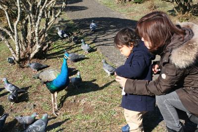 2009-12-23_7910-web6.jpg