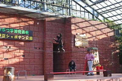 2009-12-23_7955-web9.jpg