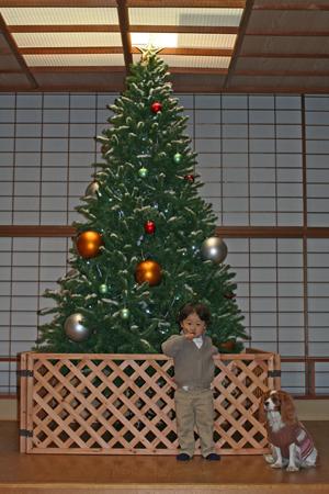 2009-12-23_7976-web2.jpg