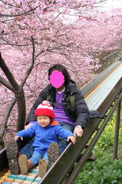 2010-02-28_8707-web1.jpg