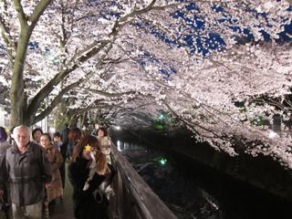 2010-04-04_8984-web4.jpg