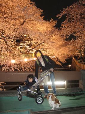 2010-04-04_8996-web5.jpg