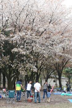 2010-04-12_9063-web4.jpg