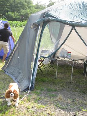 2010-08-16_9852-web3.jpg